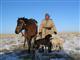 Kazakstanin metsästyskohteet