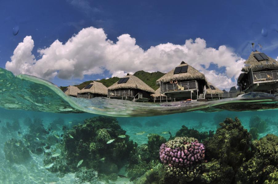 Overwater Bunaglows