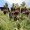 Hilton Seychelles Northolme Resort & Spa Hotel